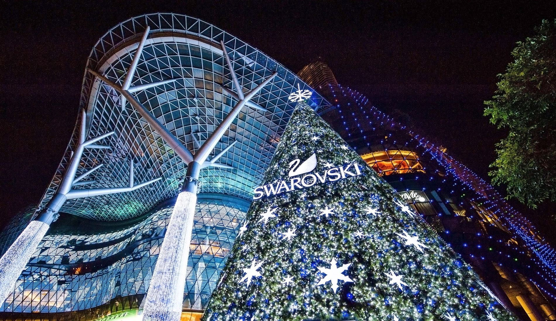 Diy Christmas Decorations Swarovski Inaugurates First Outdoor Christmas Tree In