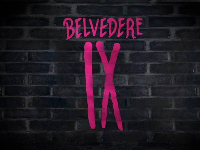 BELVEDERE IX, the new super premium vodka